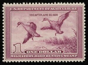 Scott#RW5 $1 Back of Book Federal Duck Mint Very LH OG Well Centered