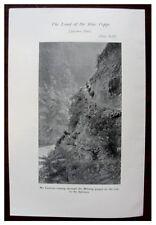 1913 Original Prospectus - THE LAND OF THE BLUE POPPY - TIBET - Kingdon-Ward