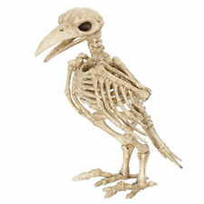 Crow Raven Skeleton Spooky Bones Skull Bird Haunted Halloween Decor Horror Scary