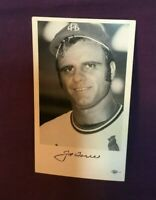 * 1970's St. Louis Cardinals Baseball Team Issue Photo JOE TORRE
