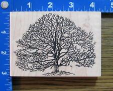 VLVS rubber stamp XL BARE TREE SCENE-BUILDING FALL WINTER Use w/STAMPSCAPES! NEW