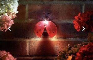 Solar LED Ladybird Light Garden