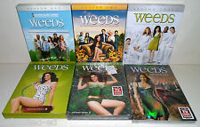 Weeds - Seasons 1 2 3 4 5 6 - Complete DVD Box Sets - LIKE NEW-FREE USA SHIPPING