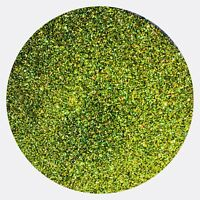Glitter Green Shaker Pots Green 100g approx by Amazing Arts and Crafts