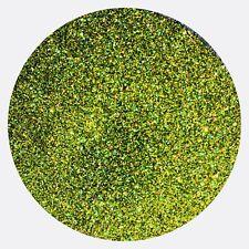 Lime Light Green Holographic Fine Glitter Dust Nails Arts Crafts  Large Bag 1Kg