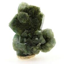 Celadonite après Apophyllite. 178.1 ct. Shakur Quarry, Maharashtra, Inde. Rare
