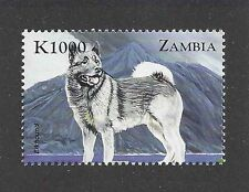 Dog Art Body Study Portrait Postage Stamp NORWEGIAN ELKHOUND Zambia Africa MNH