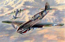 Hasegawa 1/48 P40E Warhawk US Fighter (D) HSG9086