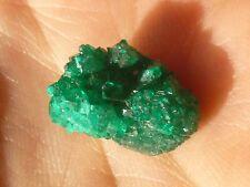 dioptase chrome crystal  cluster specimen Kazakhstan 10 carets rare green