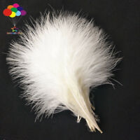 100 pcs chicken feather 10-15 cm / 4-6 inches Turkey Feathers Carnival DIY Craft