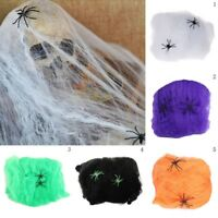 Haunted House Halloween Party Decorationp Cobwebs Spider Web-Outdoor