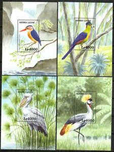 Sierra Leone Stamp - Birds of Africa Stamp - NH