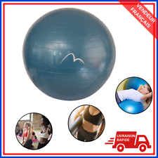 Ballon gymnastique sport exercice fitness yoga 65 cm bleu grossesse + pompe Neuf