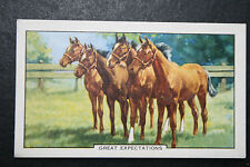Yearling  Thoroughbred Race Horses  1930's Vintage  Card  CAT J