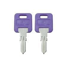 1 Pair (2 keys) Global Link Precut Keys G301 - G391 RV Trailer Camper Keys