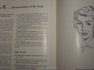 Basic Drawing Art Instruction Book 1 How to Draw Wilwerding Commercial Vintage