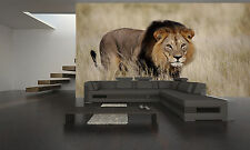 Photo Wallpaper Staring Male Lion GIANT WALL DECOR PAPER POSTER FOR BEDROOM