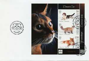 Kyrgyzstan 2019 FDC Domestic Cats Scottish Fold Maine Coon 3v M/S Cover Stamps