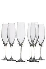 NEW Maxwell & Williams Mansion Champagne Flute  Set of 6 Gift Boxed  180ml