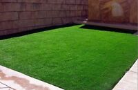 500pcs Seeds Green Source Turfgrass Grass Seeds Evergreen Lawn Seeds Home Garden