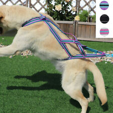 Padded Strap Durable Dog Weight Pulling Harness Reflective Dog Pet Sledding Vest