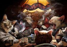 I gatti che giocano a Poker a3 Foto Stampa Artistica Poster amk3016