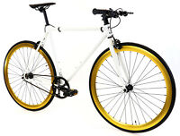 Golden Cycles Fixed Gear Single Speed Bike Bicycle Pharaoh- 41 45 48 52 55 59CM