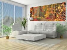 Vlies Fototapeten Fototapete Tapete Panel Wandbild  WALD IM HERBST  3FX4-002VEP