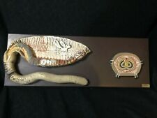 Antique Denoyer Geppert Giant Earthworm Anatomical Biology Model Anatomy 31�