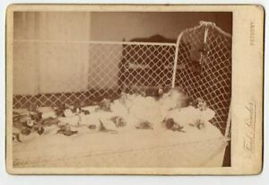 POST MORTEM Dead Baby CABINET PHOTO by Hungarian Pozsony Slovakia photographer