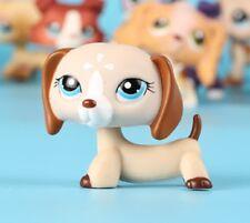 Littlest Pet Shop dog Brown White Flower Dachshund LPS puppy #1491 blue eyes