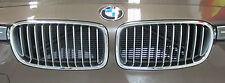 BMW Brand OEM F30 F31 3 Series Sedan Modern-Line Chrome & Silver Kidney Grilles