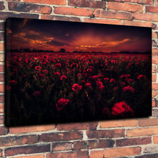 """Poppy Fields At Twilight Printed Canvas Picture A1.30""""x20"""" x 30mm Deep Sunset"""