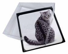 4x PLATA LUNAR gato atigrado Imagen MESA Posavasos Juego En Caja de regalo,