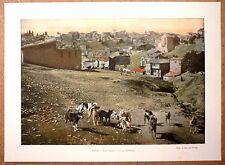 TURQUIE Vue de Constantinople - Photochromie fin 19ème Gravure - Istanbul