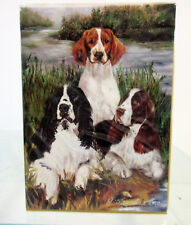 English & Welsh Springer Spaniels Dog Poker Playing Card Deck of Cards Spaniel