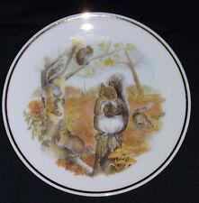 Wildlife Britain Squirrel. Collector Plate Readers Digest Susan Beresford 79-369