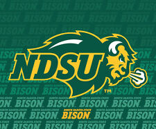 "NORTH DAKOTA STATE BISON 5""X6"" REPEAT DECAL-NDSU DECAL STICKER-NEW FOR 2016"