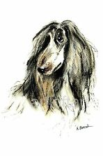 AFGHAN HOUND #3   ACEO Art Card Print by A Borcuk
