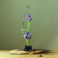 Flower Arranging Tools Ikebana Kenzan Frog Florist Floristry Round Pin Holder