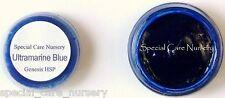 Genesis heat set paint 2g/ml Ultramarine blue - Buy any 5 pots get 6th FREE!