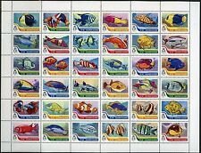 SOLOMON ISLANDS 2016 FISH  SHEET OF 36 MINT NH
