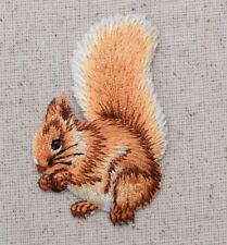 Forest Squirrel Eating Nuts - Animals - Iron on Applique/Embroidered Patch