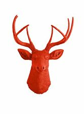 The Anastasia - Orange Resin Deer Head- Stag Resin Orange Faux Taxidermy Animal