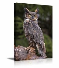 """Canvas Prints Wall Art - a Great Horned Owl Sitting on a Tree Stump - 16"""" x 24"""""""
