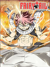 FAIRY TAIL - LIGHTNING FIRE MODE PAPER POSTER Licensed 28X36