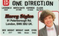 Harry Styles ONE DIRECTION novelty plastic collectors card Drivers License