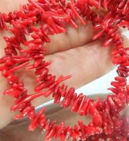 """Natural 3X10MM Red Coral Gemstone Chip Loose Beads 15"""" Strand"""
