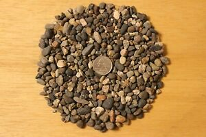 Pea Gravel Pebbles Aquarium Substrate