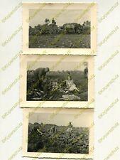 3x Foto, Ernteeinsatz Arbeitsdienst dt. Züllichau Sulechów Polen, d (W)1892